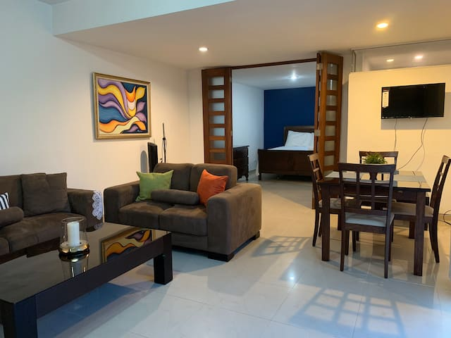 Luxurious Apartment Near the Malecon