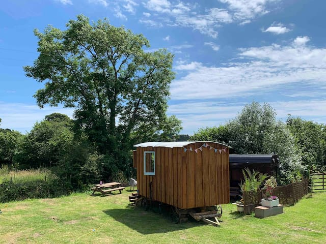 Shepherds hut with log burner and tandem bicycle