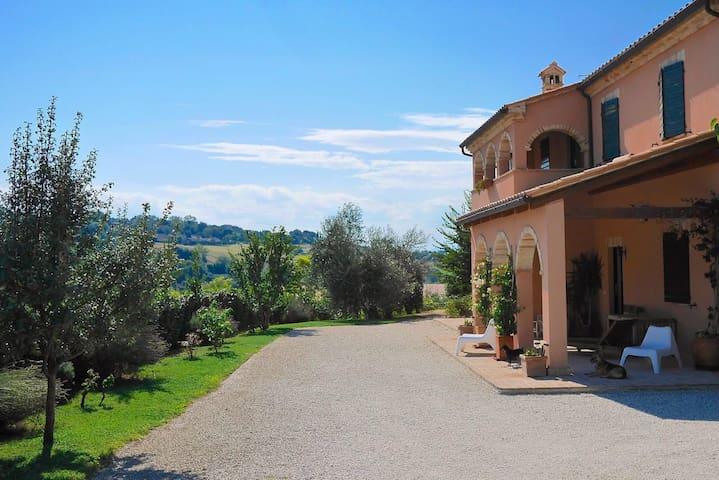 Casale Blulavanda - Morrovalle