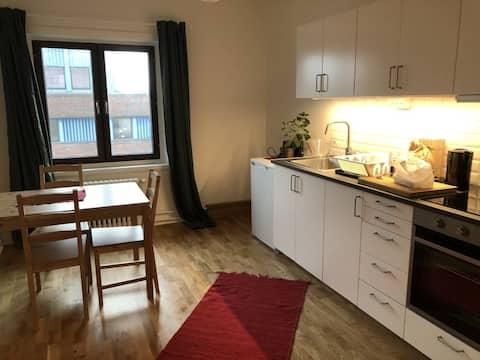 Svingeln residence/Apartment 9