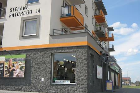 Апартаменты у Мицкевича - Biała Podlaska - 公寓