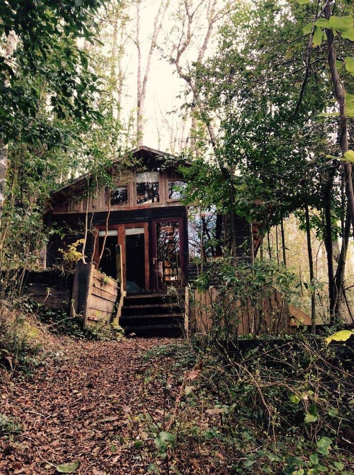 Acogedora cabaña en el bosque!