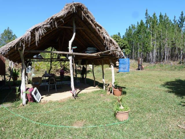 une maisonnette entourée de Niaouli - Poindimié