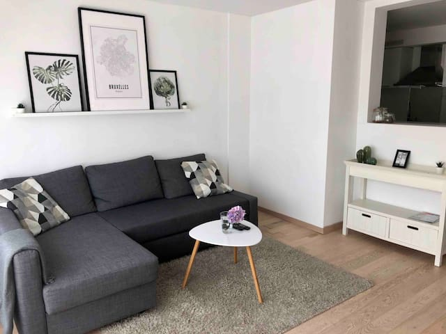 Renovated 2 bedroom apartment close to BRU airport