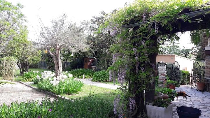 Guest house indépendante avec piscine à Vence