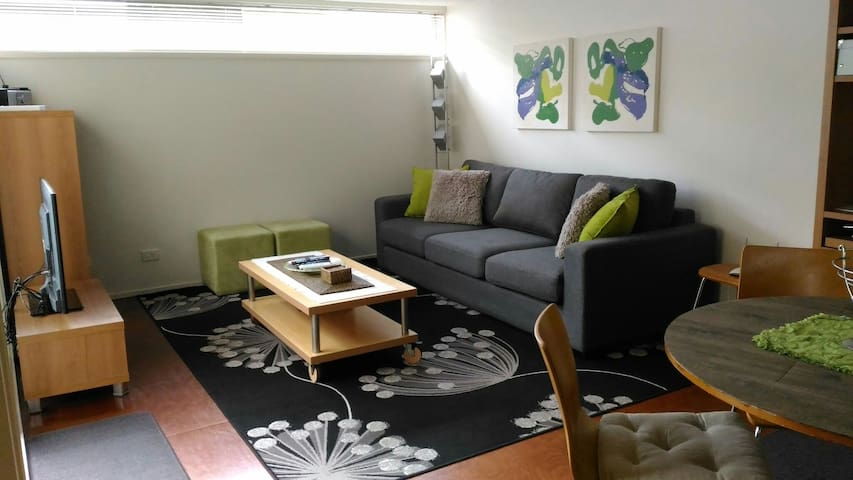 Waterloo 1 BR loft apartment w FREE WiFi & parking