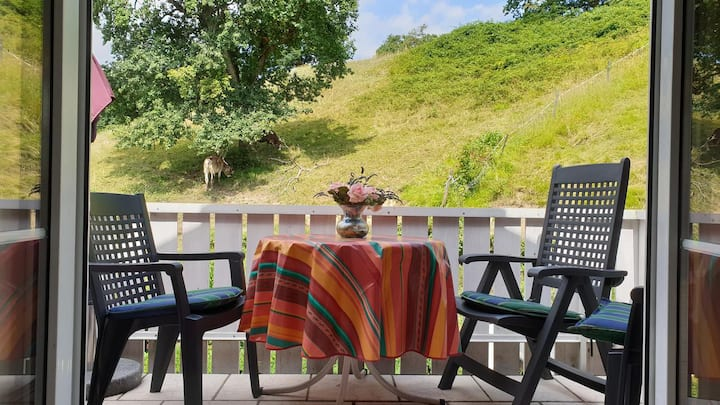 "Cosy Apartment ""Annemarie and Walter Hechelmann"" near Lake Constance with Mountain View, Wi-Fi & Balcony; Parking Available"