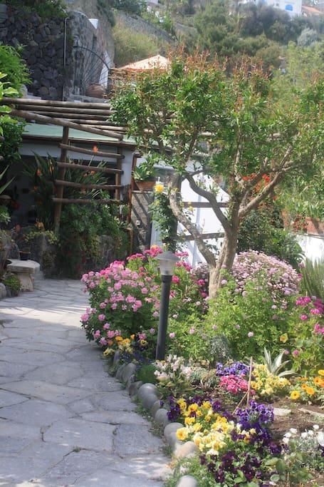 Viale fiorito di ingresso alla Villa Margherita