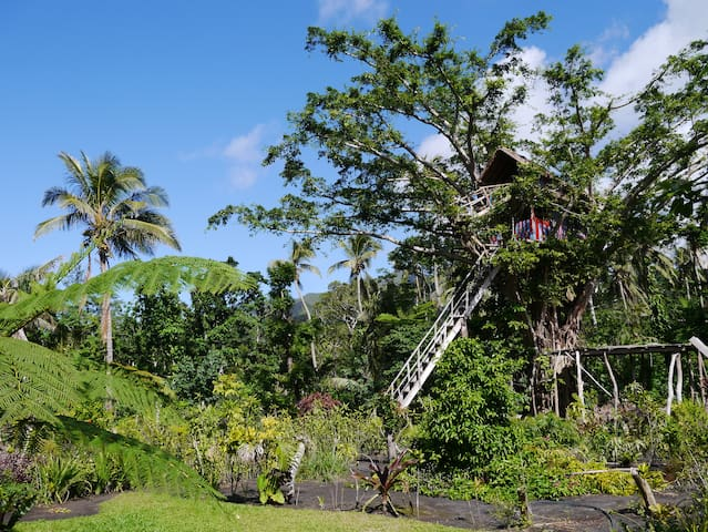 TREE TOP HOUSE at volcano's entrance - Yasur Lodge - Lowanatom - Treehouse