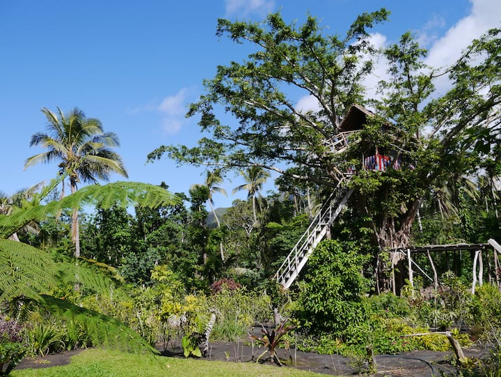 TREE TOP HOUSE at volcano's entrance - Yasur Lodge