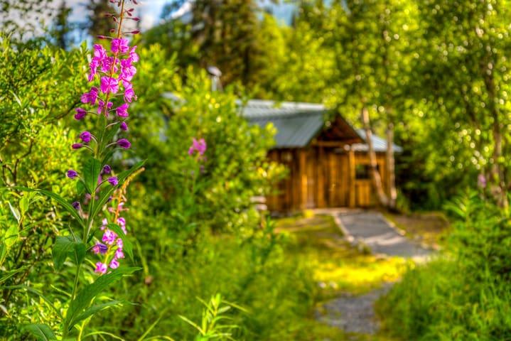 Manitoba Cabin and Yurts: Toba's Yurt