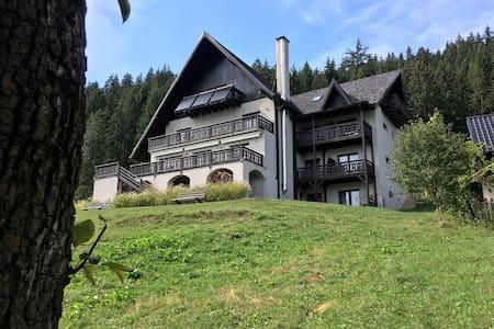 Guesthouse Bucovina Lodge