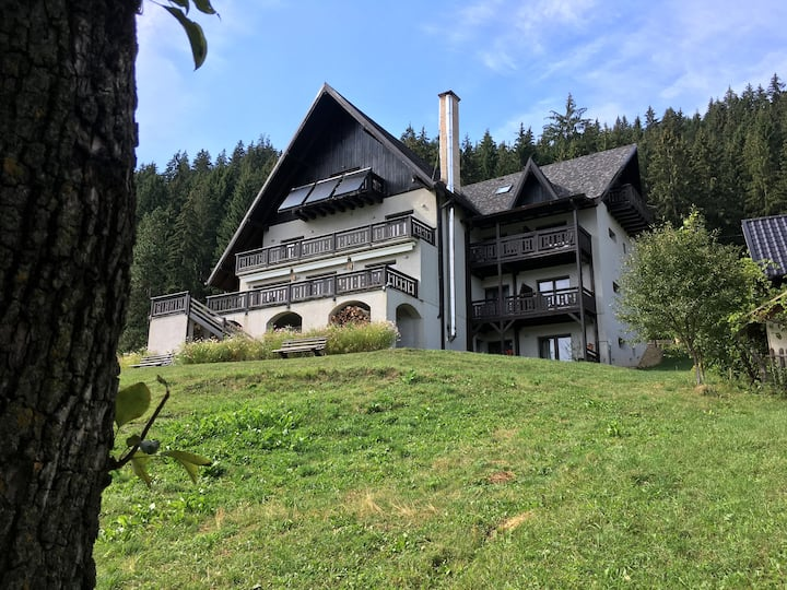 Guesthouse Bucovina Lodge