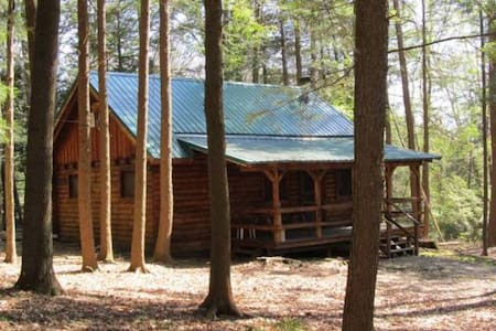 Cook Forest Cabin 5
