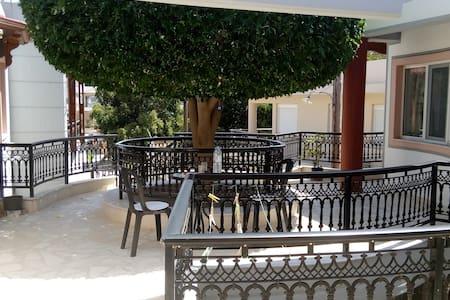 Varsamas Apartment II - Agia Pelagia - Apartment