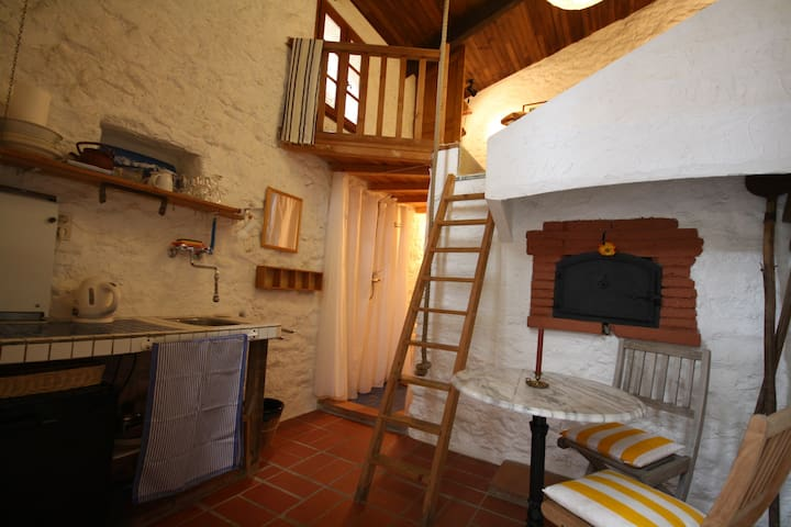 bakery (fournil) set in a cosy, natural stone cour - Montauriol - Guesthouse