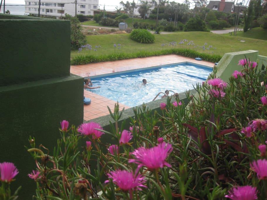 piscina vista desde el apartamento