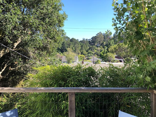 View from private deck looking out at Tam Valley.