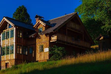 "Austria, Ski Resort, Chalet  ""Ski in Ski out"" - Altaussee - Natur lodge"