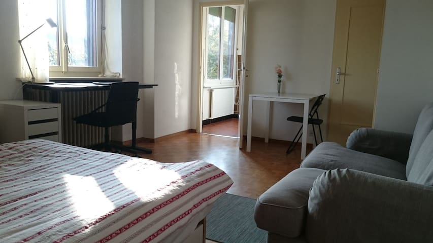 Geneva central flat for sublet