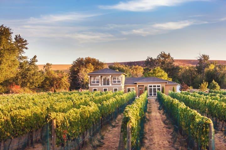 Vineyard View Estate