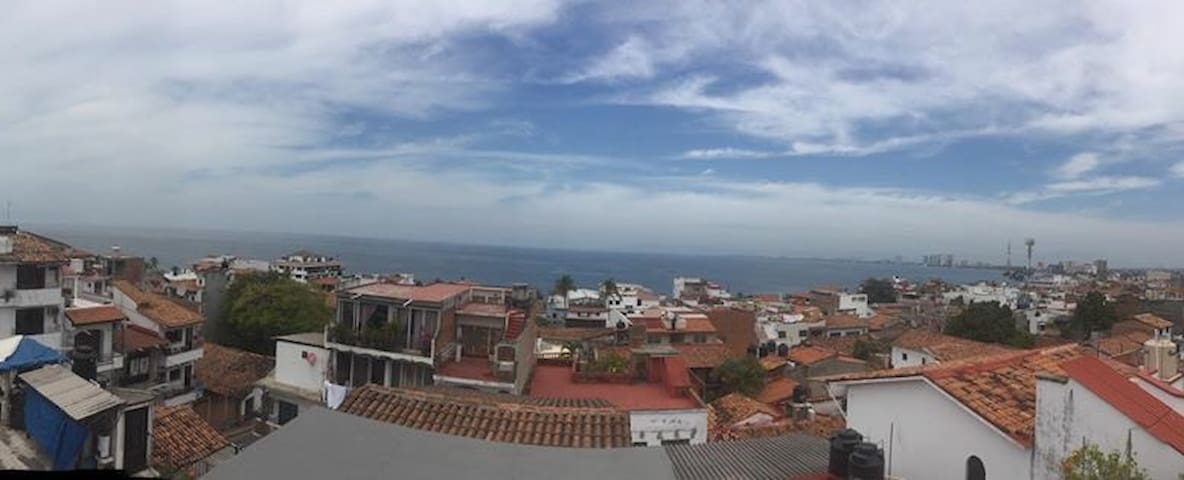 Amazing 1 bdr in downtown PV