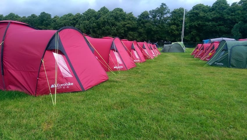 Pre-Pitched Tent for 1 Person - Cardiff - Tent