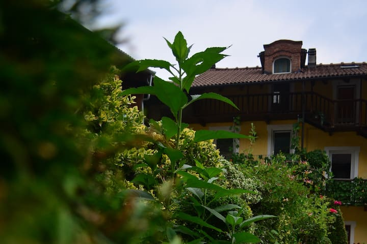 Delfina's - A house close to Turin and the Alps