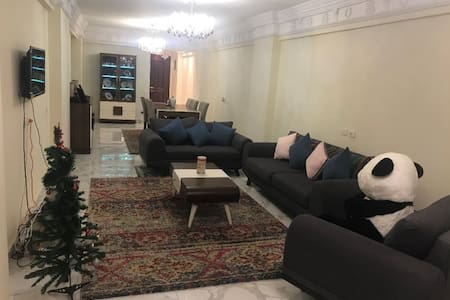 Fully furnished large apartment in Alexandria