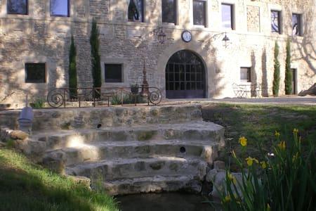 GITE DE PRESTIGE LA RENAISSANTE - Peyrins - Castle