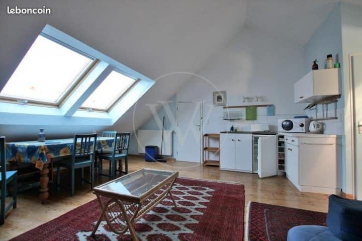 Studio sous toiture
