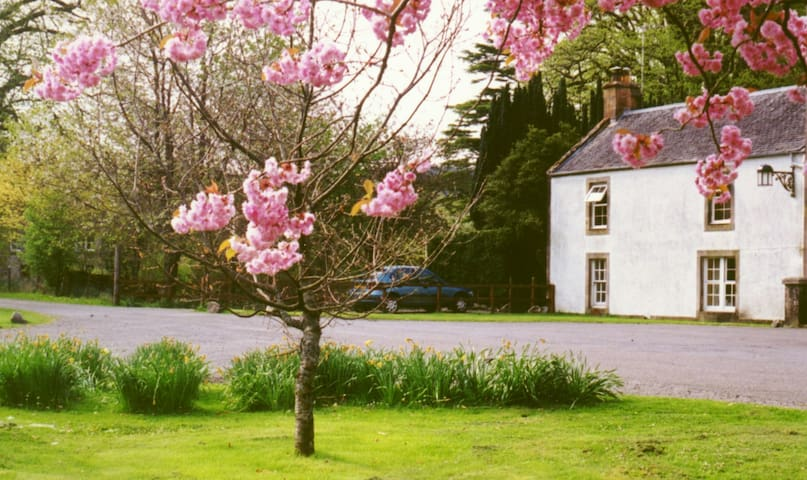 Butlers Cottage - Taynuilt - Casa
