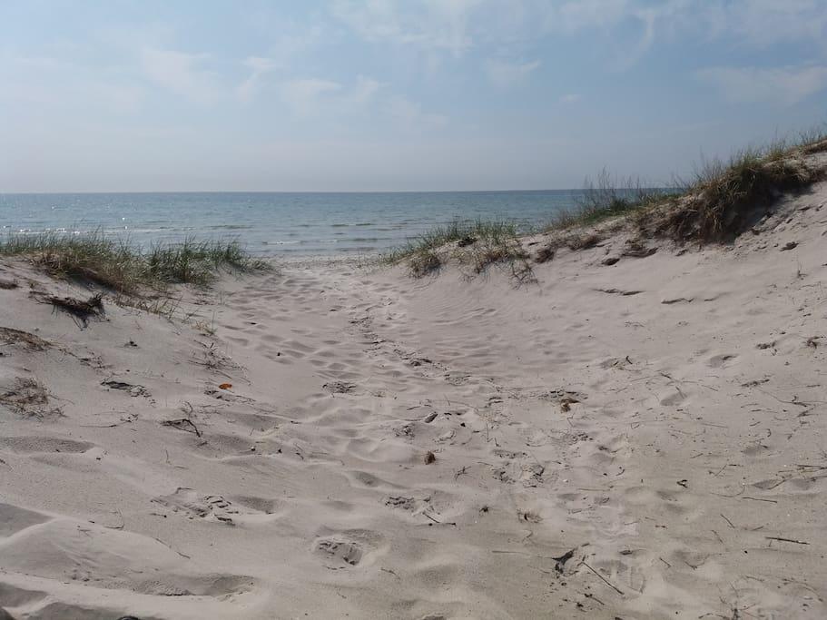 White sand and beautful  dunes