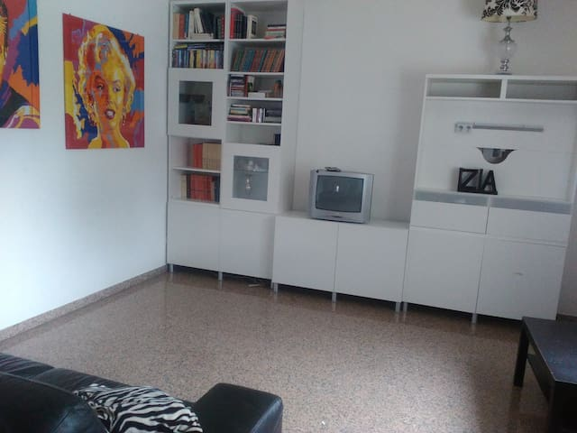 Ampio appartamento 400 metri dal mare - Pineto