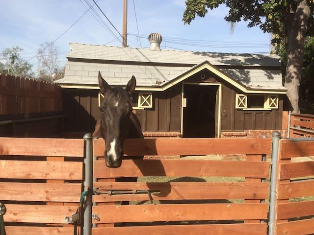 Burbank Rancho Private Guest Suite - Burbank