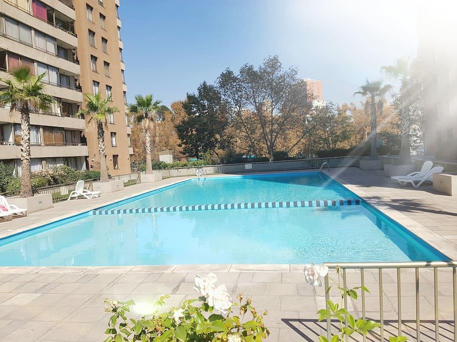 Vista desde la piscina al Parque Forestal.