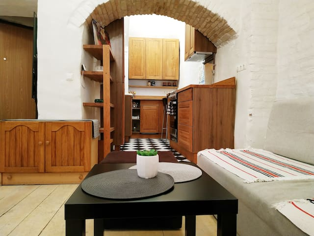 Historical 40m2 Old Town/Užupis Apartment