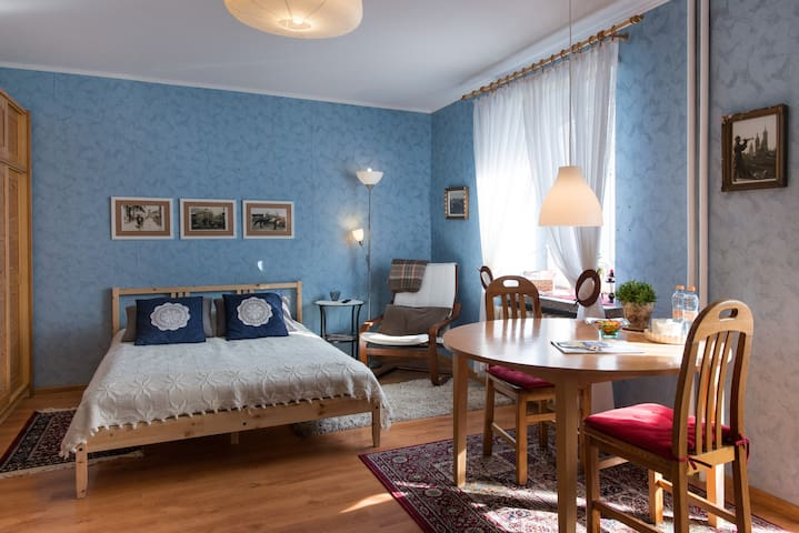 Cosy Apartment near to Wawel Castle
