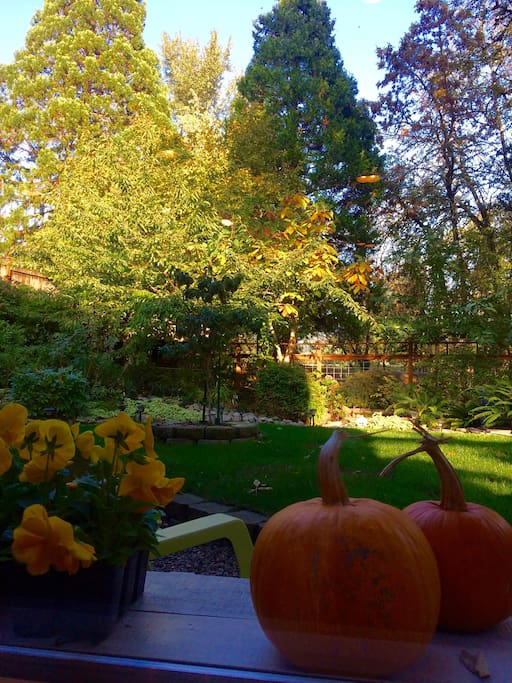 Enjoy the warm autumn afternoons and cool evenings of the Willamette Valley.