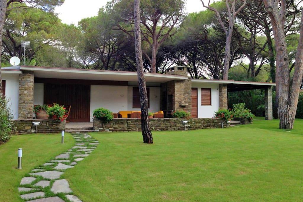 Villa Monte Pine Forest Roccamare Villas For Rent In