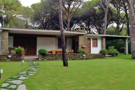 Villa Monte - Pine forest Roccamare - Roccamare