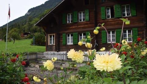 Gemütliche 2,5 Z-Wohnung mit Blick aufs Wetterhorn