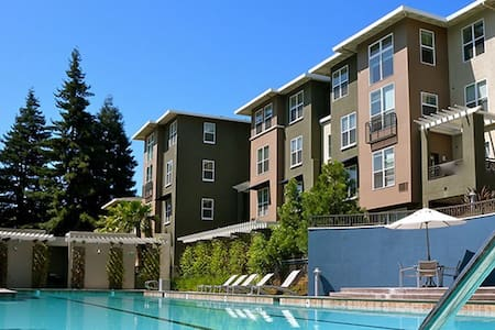 Luxury One Bedroom Apartment in Central Location - San Jose