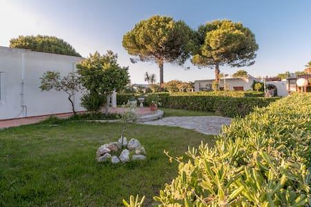 Oasi del mediterraneo - Santa Cesarea Terme