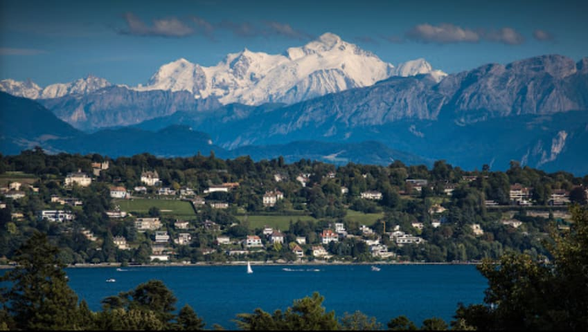 Lovely tiny Independant Studio in Villa Basement - Pregny-Chambésy - Byt