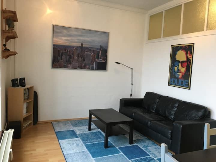 Gemütliches Stadt-Apartment im Herzen Magdeburgs