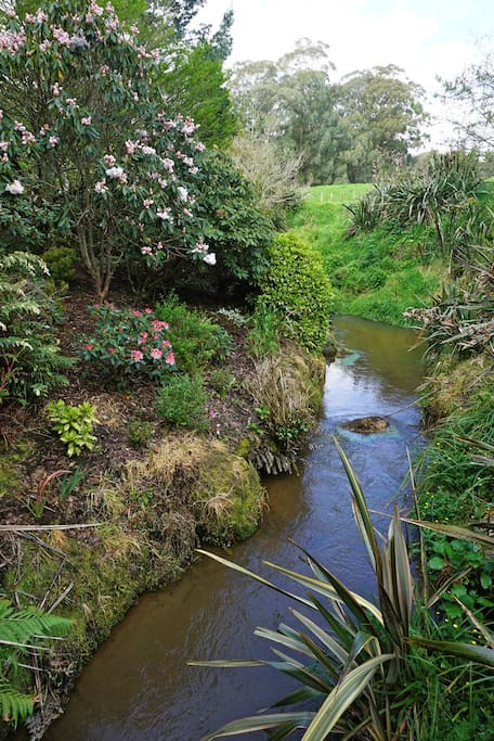 The OHUANUI Stream(means Full Moon)