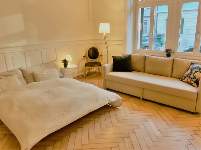 Big Room in Zurich City. (longterm rent possible)