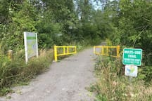 The Lang Hastings Trail connects to a trail system that covers thousands of miles across Ontario!