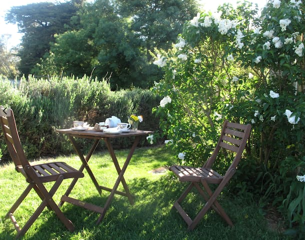 Afternoon tea in the garden at Tolka Cottage with freshly made cakes.